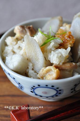 HOSHIKOごぼうスライスと里芋のゴロゴロ鶏おこわ